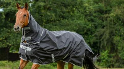 TRIED & TESTED: Bucas Smartex Extra Big Neck
