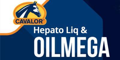 Help je paard met olieën en een detox